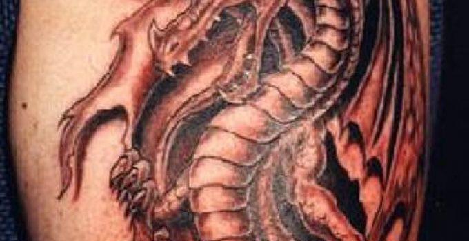 Tatoo homme dragon